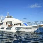 Resort Boats - Coco Adventurer