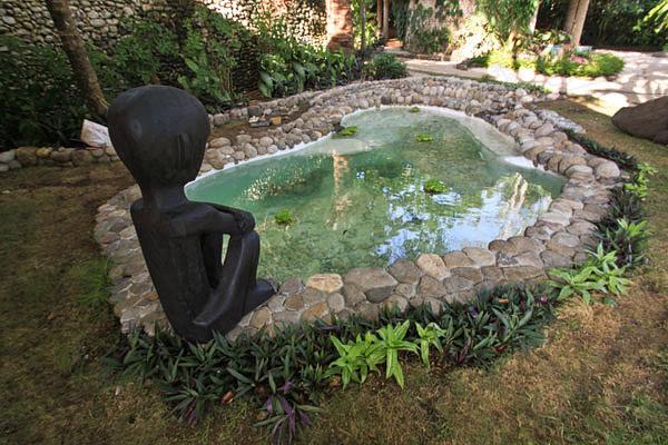 New: Koi Pond Image