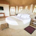 Penthouse - Unique Oval Bed