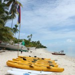 Kayaks and Surf skis